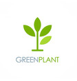 green plant seed logo vector image