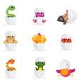 cute newborn animal characters set funny reptiles vector image
