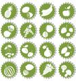 set of fresh fruits vector image vector image