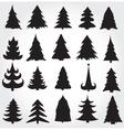 Christmas Pine Trees vector image