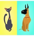 Cat and dog sitting on different backgrounds vector image