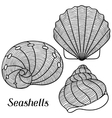 Set of stylized seashells Objects for decoration vector image