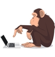 Monkey and computer vector image