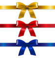 satin bows set vector image