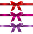 satin color bows set vector image