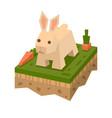 3d isometric flat style rabbit vector image