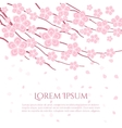 Cherry blossom card Flowering branch vector image