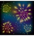 Fireworks on a colorful sky vector image