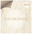 texture paper curl vitage style background vector image