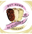 hocolate Ice-creame with price Popsicle on a vector image