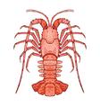 Decorative isolated crayfish vector image