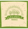 organic product Hand drawn three fruit vector image