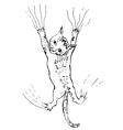 Kitten Scratching Sketch vector image