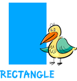 rectangle shape with cartoon bird vector image vector image