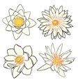 Set of four flowers lotus and water lily vector image