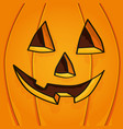 halloween face pumpkin vector image