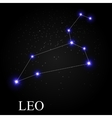 Leo Zodiac Sign with Beautiful Bright Stars on the vector image vector image