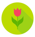 Spring Flower Tulip Circle Icon vector image