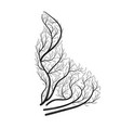 sea lion bush stylization vector image