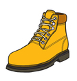 boot in style vector image