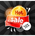 Hot sale banner Advertising flyer for commerce vector image