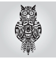 Beautiful ornamental owl graphic vector image