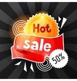 Hot sale banner Advertising flyer for commerce vector image