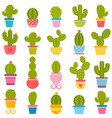 set of cactuses in the pots vector image