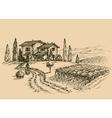 Vineyard drawing Traditional farm sketch vector image vector image