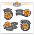 basketball balls vector image