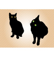 black cats on the background vector image