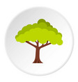 tree icon circle vector image