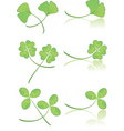leaves green vector image vector image