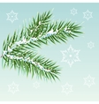 Green Pine branches in the snow vector image vector image