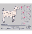 Goat meat cuts vector image