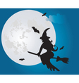 Night sky vector image vector image