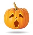 pumpkin sad vector image vector image
