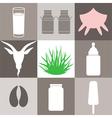 Milk Set vector image vector image