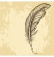 Sketch of the feather on grungy texture vector image