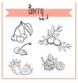 BerrySet1 vector image