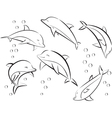 cheerful sea dolphins vector image vector image