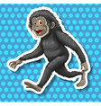 Black monkey walking and smiling vector image