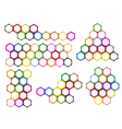 Different Styles and Colors of Hexagon Label vector image