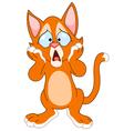worried cat vector image