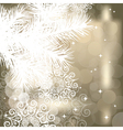Winter background with Christmas tree branch vector image