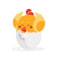 cute newborn yellow bird character funny nestling vector image