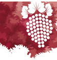 grape fruit fresh wine image vector image