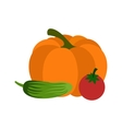 Fresh vegetables icon vector image