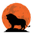 lion snarling on a rock vector image