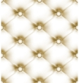 luxury buttoned leather vector image